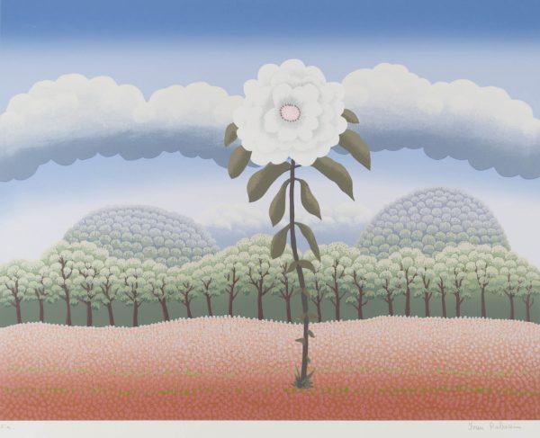 Ivan Rabuzin White flower 223