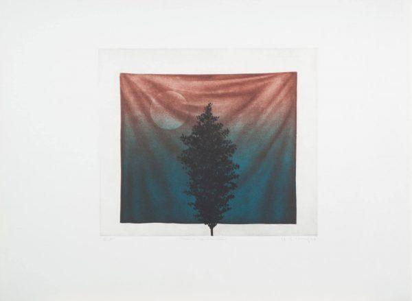 Kyu-Baik Hwang Tree & Handkerchief 417