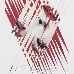 Original poster Ice Point James Rosenquist 502