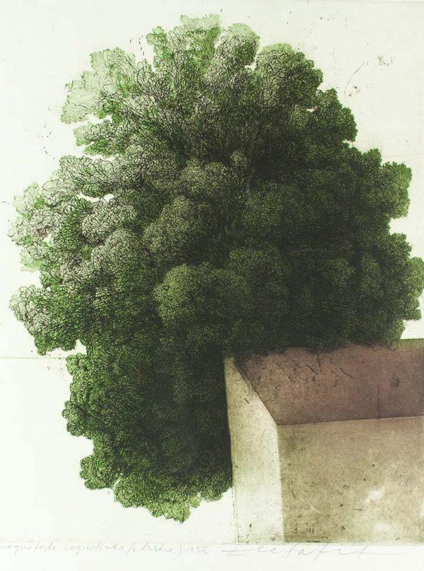 Safet Zec Tree 241
